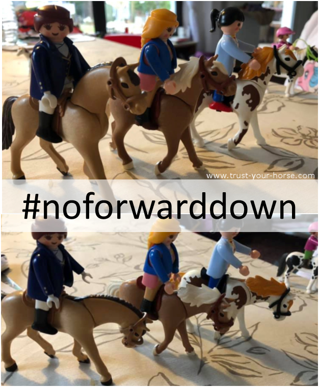 Trust-your-Horse - NOFORWARDDOWN